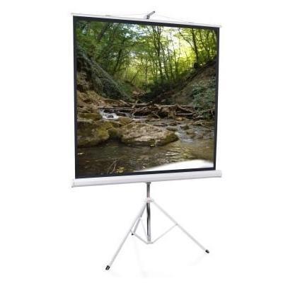 Экран Elite Screens T119NWS1 тринога (напольный) (T119NWS1)Проекционные экраны Elite Screens<br>Elite Screens T119NWS1 (119/1:1) 213x213cm, тринога (напольный), MW, бел. корпус<br>
