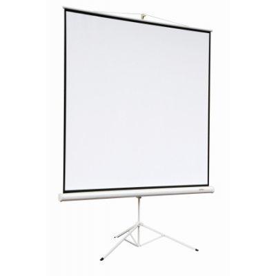 Экран Digis DSKA-4303 (DSKA-4303) экраны для проекторов digis optimal d формат 4 3 94 150 200 mw dsod 4303