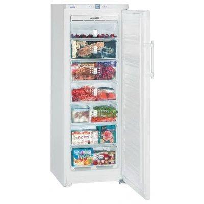 Морозильная камера Liebherr GNP 2756 (GNP 2756-21 001)Морозильники Liebherr<br>морозильник-шкаф, отдельно стоящий, общий объем 265 л, 1-камерный, электронное управление, генератор льда, габариты (ШxГxВ): 60x63x164.4 см, цвет: белый<br>