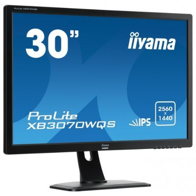 Монитор IIYAMA 30 ProLite XB3070WQS-1 (XB3070WQS-B1)Мониторы IIYAMA<br>Монитор LCD 30&amp;amp;#039;&amp;amp;#039; 16:10 2560х1600 IPS, nonGLARE, 350cd/m2, H178°/V178°, 5М:1, 5ms, VGA, DVI, HDMI, DP, Height adj., Tilt, HAS, Speakers, Swivel, 3Y, Black, PL3070WQ<br>