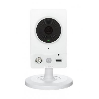 Камера видеонаблюдения D-Link DCS-2103/UPA/B1A (DCS-2103/UPA/B1A)