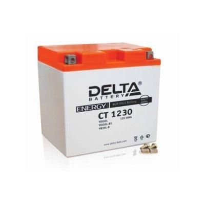 Аккумуляторная батарея для ИБП Delta DTM 12230 L (DTM 12230 L)Аккумуляторные батареи для ИБП Delta<br><br>