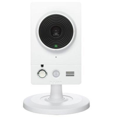 Камера видеонаблюдения D-Link DCS-2210L/UPA/A1A (DCS-2210L/UPA/A1A)