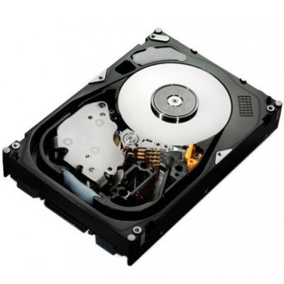 Жесткий диск серверный Hitachi 0B31241 (0B31241), арт: 250404 -  Жесткие диски серверные Hitachi