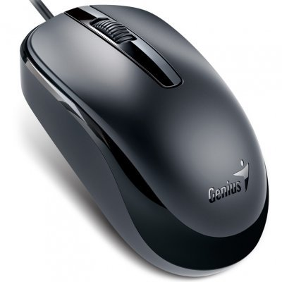 Мышь Genius DX-120 Calm Black USB (31010105100)Мыши Genius<br>(Cable, Optical, 1000dpi, 3 bts, USB) Black<br>
