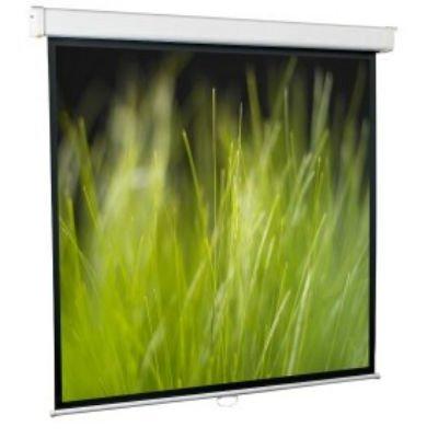 Проекционный экран ScreenMedia SGM-16905 (SGM-16905)Проекционные экраны ScreenMedia<br>Настенный экран Goldview 274*274, рабочая поверхность 266*149 см MW<br>