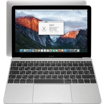 Ноутбук Apple MacBook (MNYF2RU/A) (MNYF2RU/A) ноутбук apple macbook core m3 1 2ghz 12 8gb ssf256gb hdg615 mac os x gray mnyf2ru a