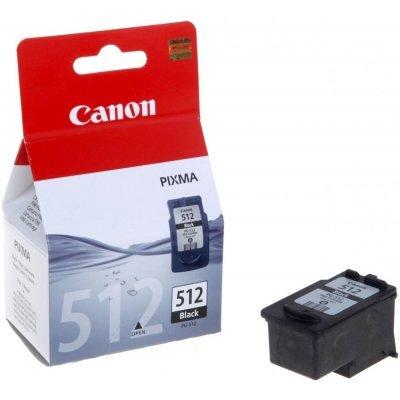 Картридж (2969B007) Canon PG-512 черный (2969B007)