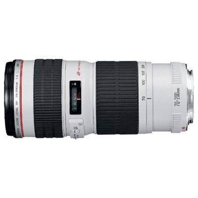 Объектив Canon EF 70-200mm f/4L USM (2578A009) slr объектив uv canon ef 17 40mm f 4l usm